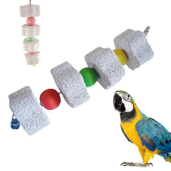 Parrots Toys