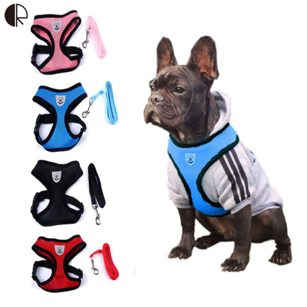Dogs Harness& Leash