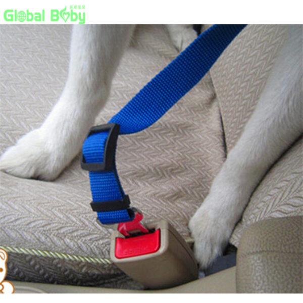 Cat Seat Belt