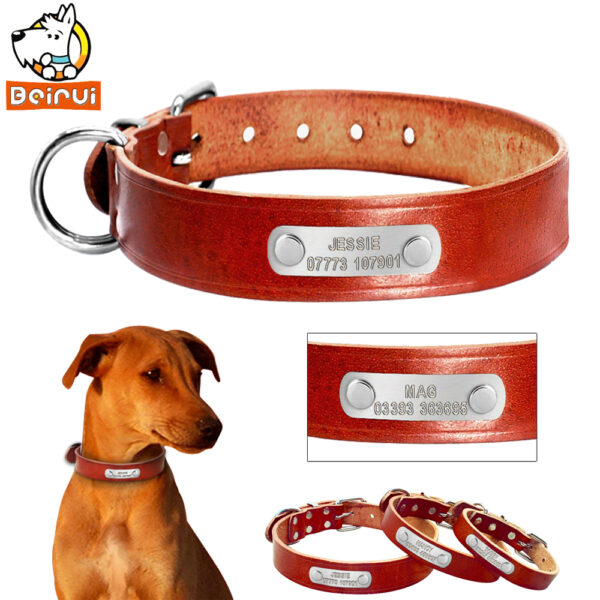 Personalized Dog Collar Leather