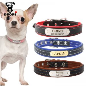Pet Name ID Collar