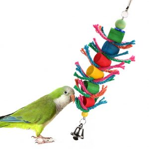 colorful parrot toy